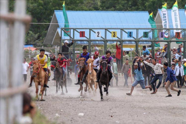 5 Lomba Pacuan Kuda Tradisional Unik Di Indonesia