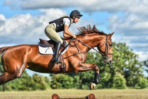 Teknik Dasar Berkuda Bagi Pemula Yang Ingin Mengikuti Lomba Pacuan Kuda